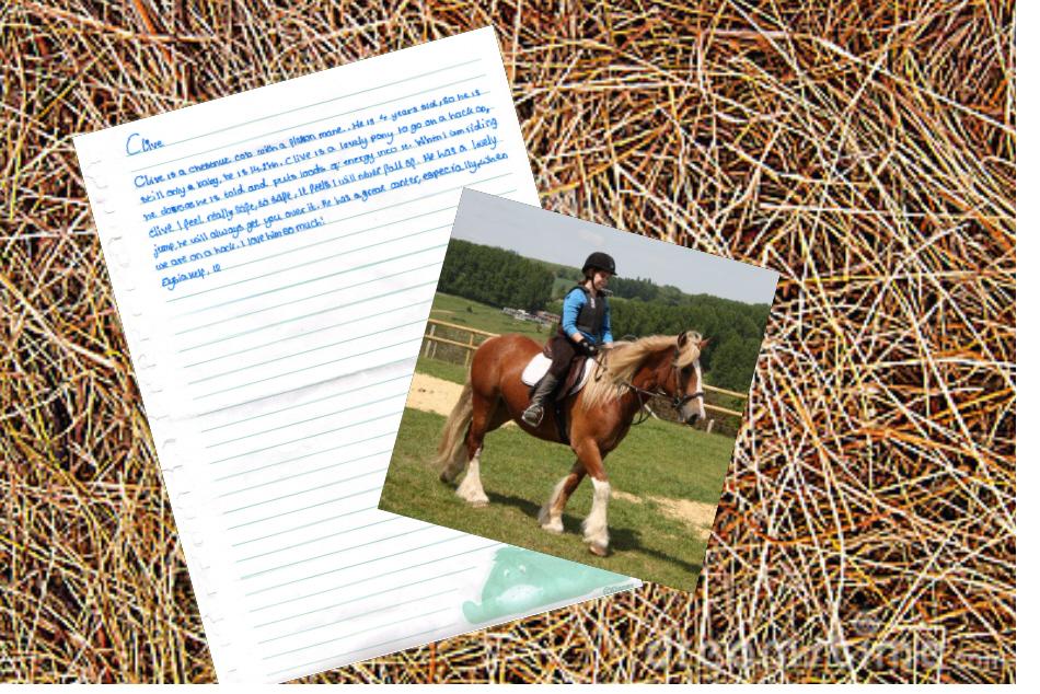 Elysia's letter